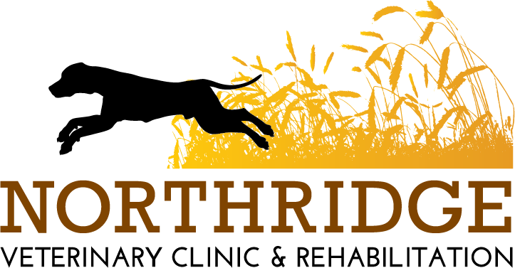 Northridge Veterinary Clinic